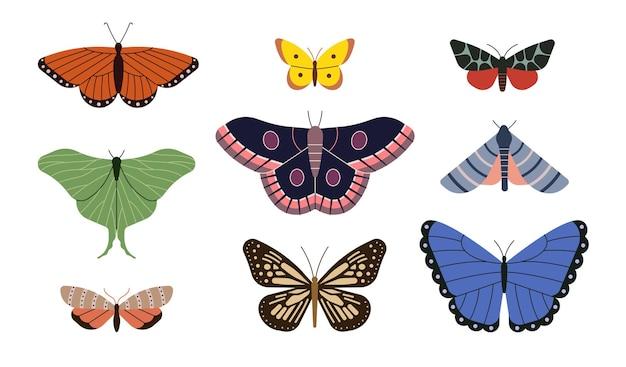 Jeu d'icônes d'illustration vectorielle de papillon fond blanc