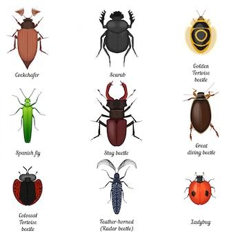 Jeu d'icônes d'insectes insectes