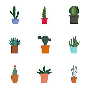 Jeu d'icônes de plante cactus succulente, style plat