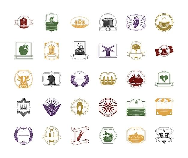 Jeu d'icônes de produits frais