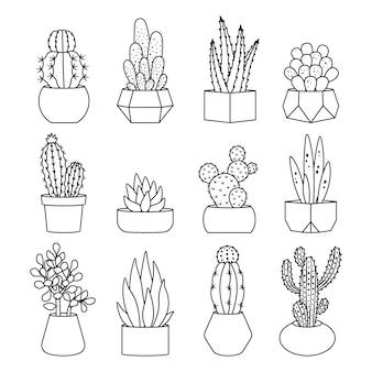 Jeu d'icônes de style de ligne cactus et plantes succulentes