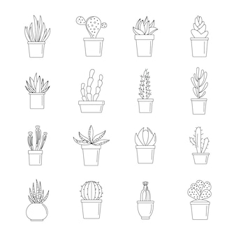 Jeu d'icônes de succulentes et de cactus
