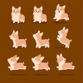 Jeu d'illustration vectorielle mignon corgi chien