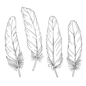 Jeu de plumes dessinées à la main
