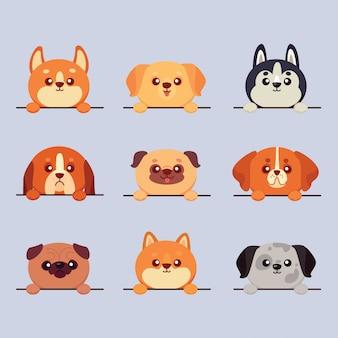 Jeu de races de chiens mignons