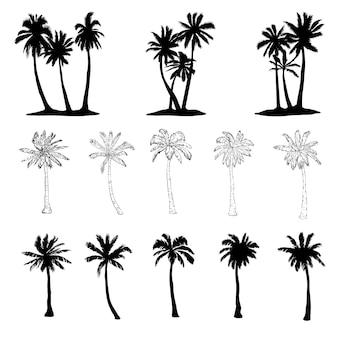 Jeu de silhouette vecteur arbre palmier