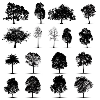 Jeu de silhouettes d'arbres