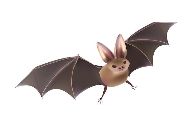 Jeu de vecteur d'halloween