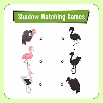 Jeux d'association d'ombres animaux vautour autruche flamingo bird