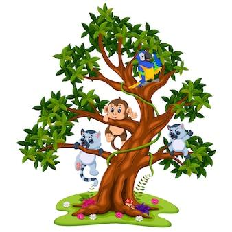Joli bébé animal sur l'arbre