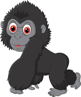 Joli bébé gorille