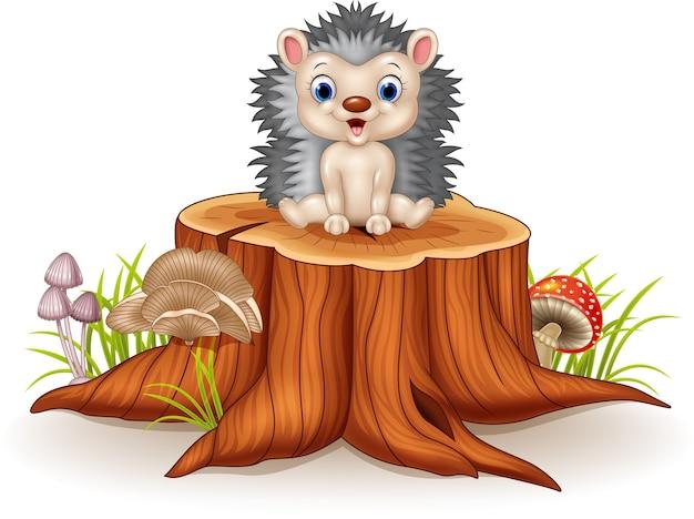 Joli bébé hérisson assis sur une souche d'arbre