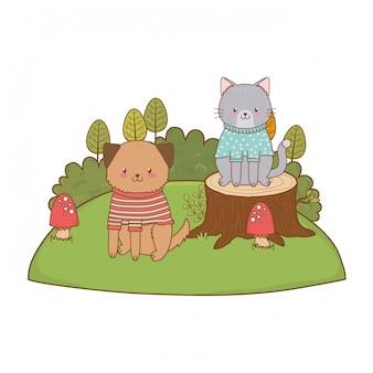 Joli chat avec un chien dans un personnage boisé de coffre