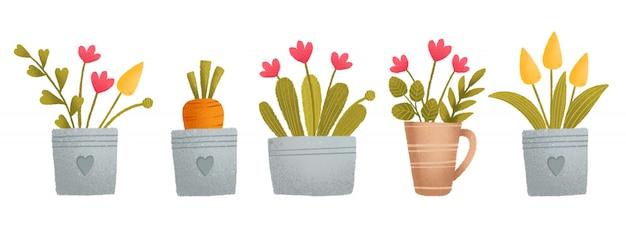 Un joli ensemble coloré, panier, carotte, fleurs, plantes, pot