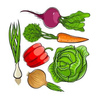 Joli ensemble de légumes frais d'automne lumineux