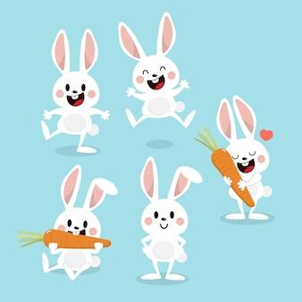 Joli lapin blanc avec carotte.
