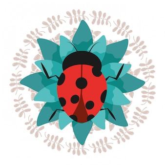 Jolie coccinelle sur une fleur verte avec une couronne