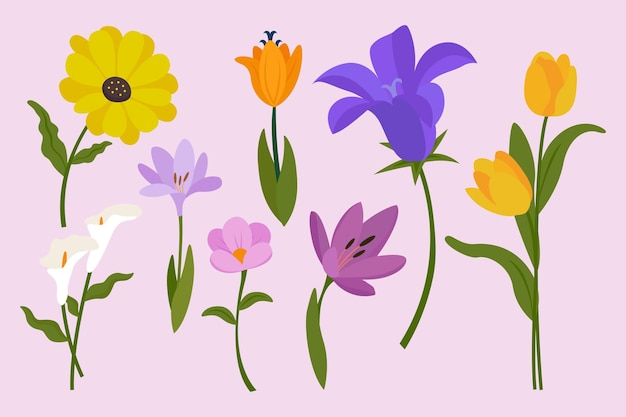 Jolie collection de fleurs de printemps