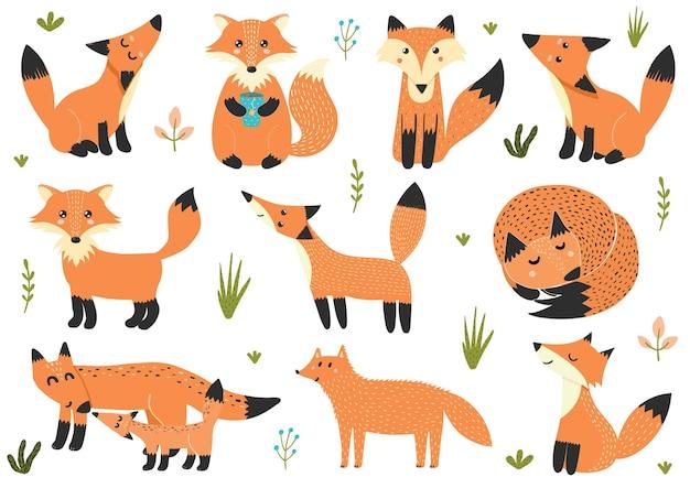 Jolie collection de petits renards isolés sur blanc