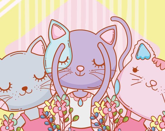 Jolies chattes à fleurs plantes