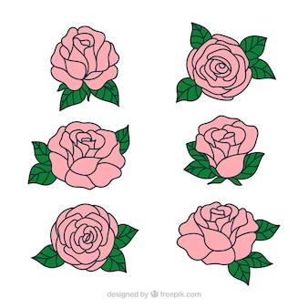 Jolies roses dessinées à la main
