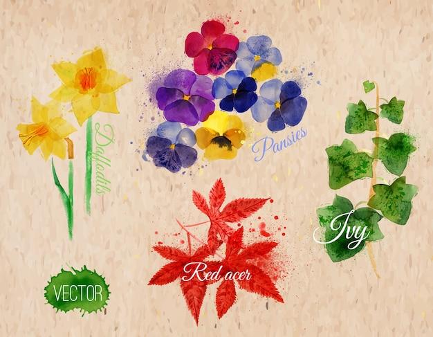 Jonquilles d'herbe de fleur
