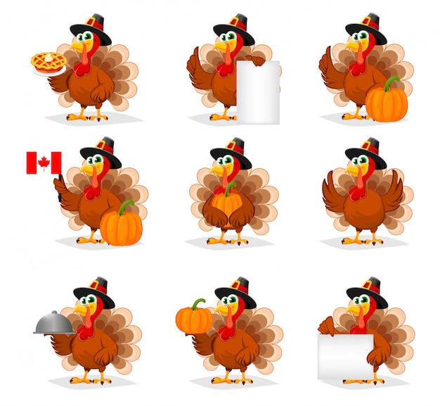 Jour de thanksgiving. dinde drôle