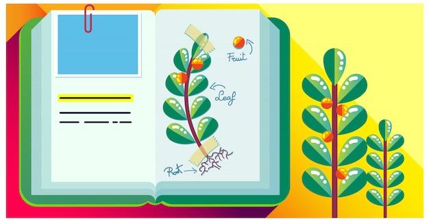 Journal de livre coloré, herbier