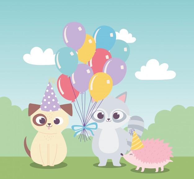 Joyeux anniversaire, dessin animé de décoration de célébration de chien raton laveur mignon