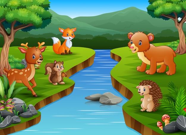 Joyeux dessin animé animal en profitant au bord de la rivière