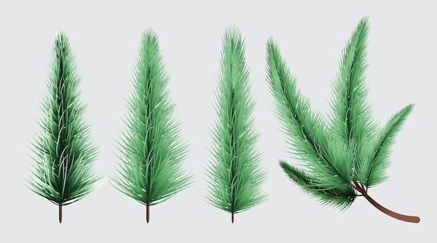 Joyeux noël et bonne année, fond de branches d'arbres de noël