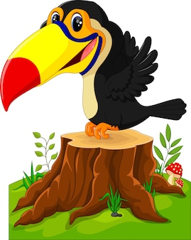 Joyeux toucan sur souche d'arbre