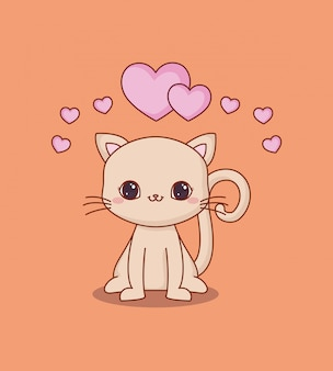 Kawaii chat et amour