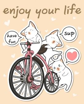 Kawaii chats avec un vélo vintage