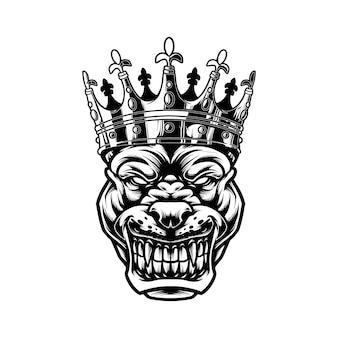 King pitbull isolé sur blanc
