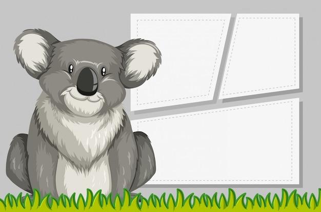 Koala en arrière-plan