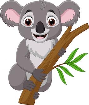 Koala de dessin animé sur une branche d'arbre