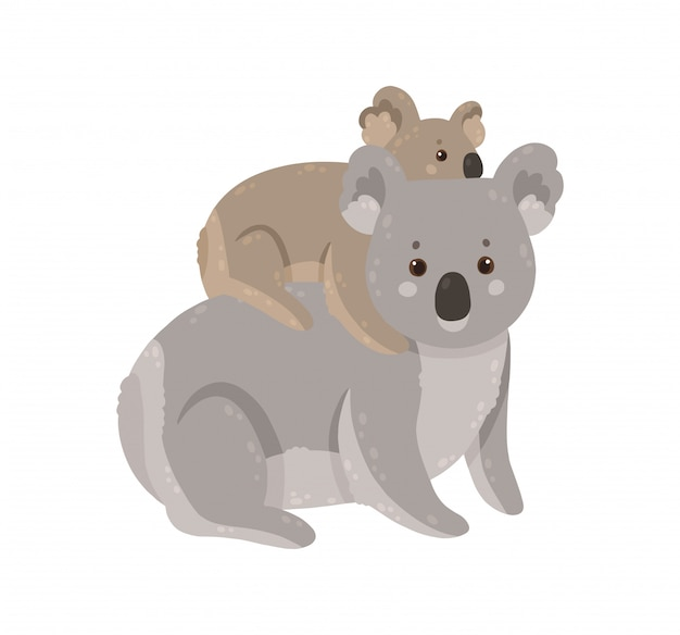 Koala mignon avec bébé. koala mère avec son enfant.