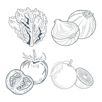 Laitue oignons tomates et oranges