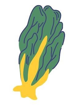 Laitue verte. alimentation végétarienne biologique. ingrédient frais et sain pour la cuisson des salades. nourriture saine. végétalien, fermier, biologique. illustration vectorielle en style cartoon plat isolé sur fond blanc.