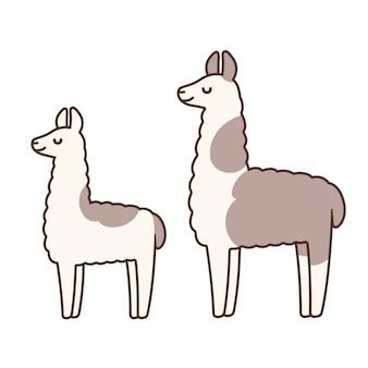 Lamas de dessin animé mignon