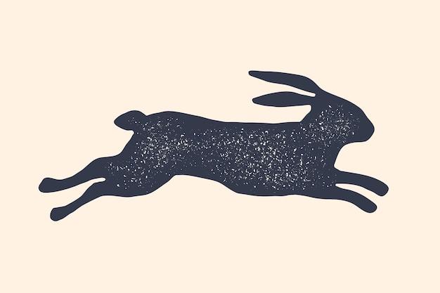 Lapin, lièvre, silhouette.
