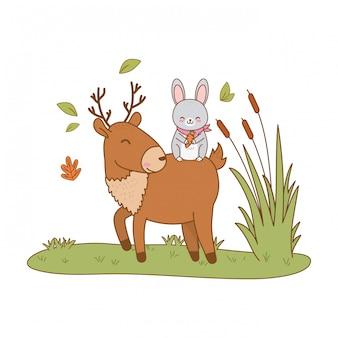 Lapin mignon et renne dans le champ des personnages forestiers