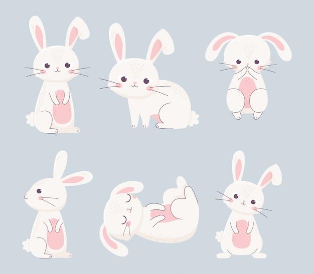 Lapins de pâques heureux différentes poses de personnages de dessins animés