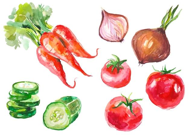 Légumes aquarelles isolés sur blanc
