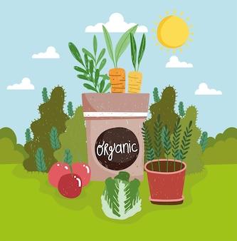 Légumes bio en pot