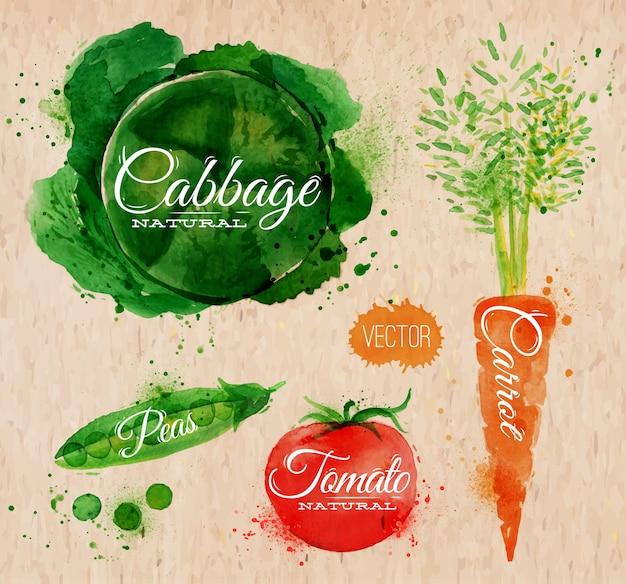 Légumes chou aquarelle
