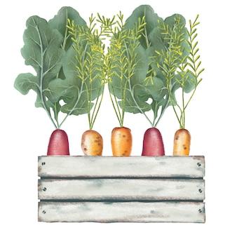 Légumes crayon peints à la main dans une boîte en bois