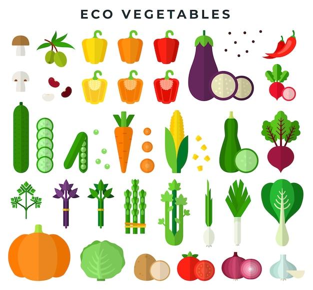 Légumes écologiques dans un ensemble design plat coloré