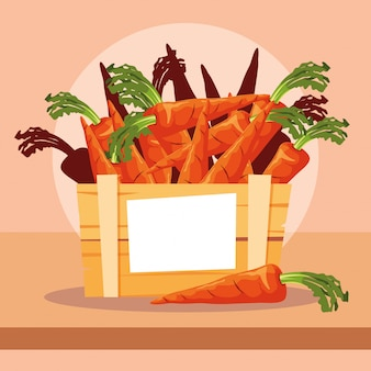Légumes frais de carottes dans une caisse en bois